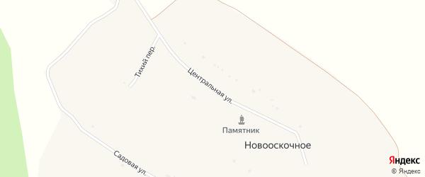 Центральная улица на карте Новооскочного села с номерами домов