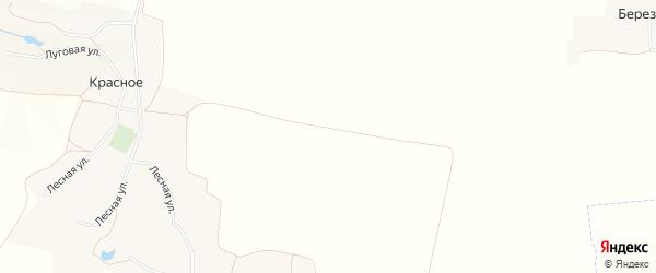 Карта хутора Редкодуба в Белгородской области с улицами и номерами домов