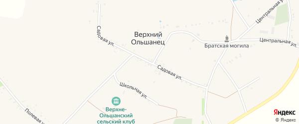 Садовая улица на карте села Верхнего Ольшанца с номерами домов