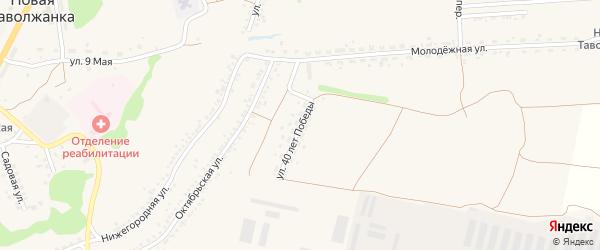 Улица 40 лет Победы на карте села Новой Таволжанки с номерами домов