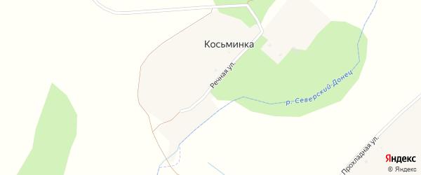 Речная улица на карте села Косьминки с номерами домов