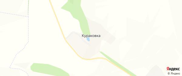 Карта хутора Кураковки в Белгородской области с улицами и номерами домов