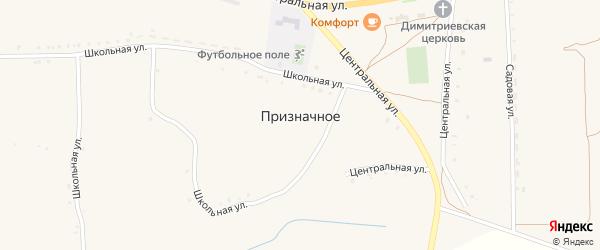 Народная улица на карте Призначного села с номерами домов