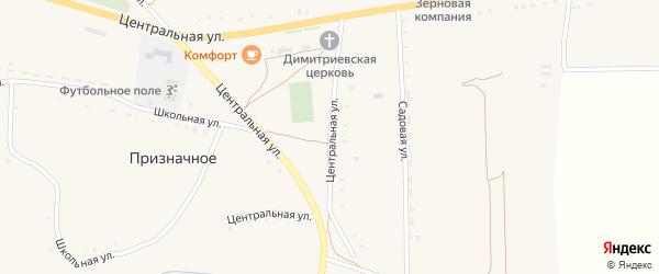 Центральная улица на карте Призначного села с номерами домов