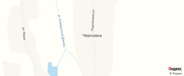 Родниковая улица на карте хутора Черновки с номерами домов