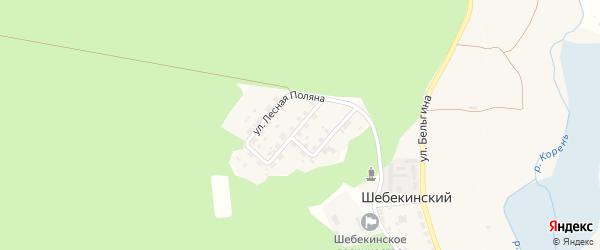 Улица Лесная Поляна на карте Шебекинского поселка с номерами домов