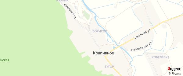 Карта Крапивного села в Белгородской области с улицами и номерами домов