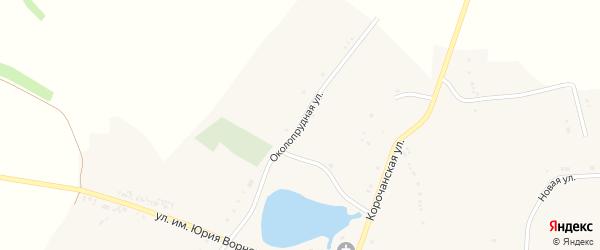Околопрудная улица на карте села Шеино с номерами домов