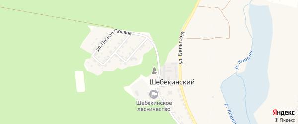 Подлесная улица на карте Шебекинского поселка с номерами домов