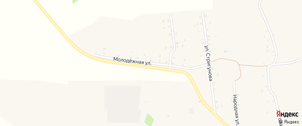 Молодежная улица на карте села Подольхи с номерами домов