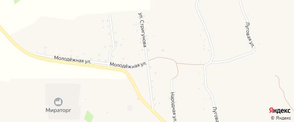 Улица Стригунова на карте села Подольхи с номерами домов