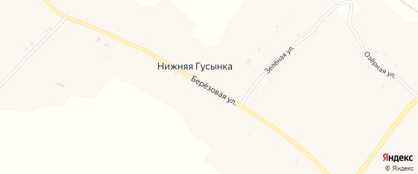 Березовая улица на карте хутора Нижней Гусынки с номерами домов
