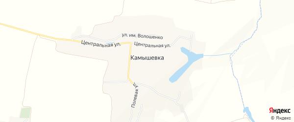 Карта села Камышевки в Белгородской области с улицами и номерами домов