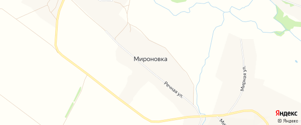 Карта хутора Мироновки в Белгородской области с улицами и номерами домов