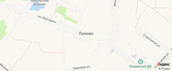 Веселая улица на карте села Ломово с номерами домов