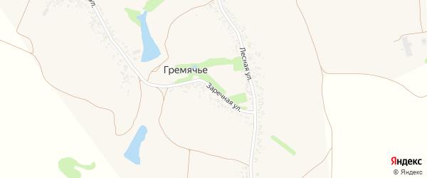 Заречная улица на карте села Гремячьего с номерами домов