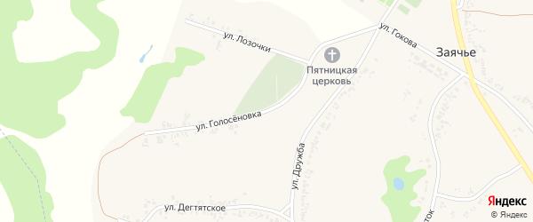Улица Голосёновка на карте села Заячьего с номерами домов