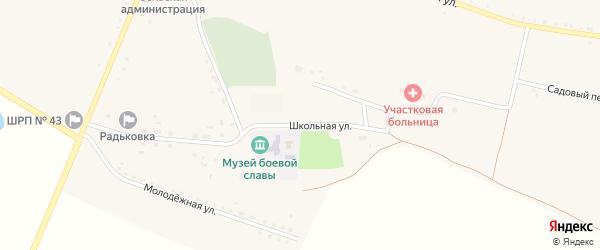 Школьная улица на карте села Радьковки с номерами домов