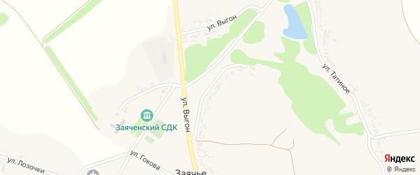Улица Выгон на карте села Заячьего с номерами домов