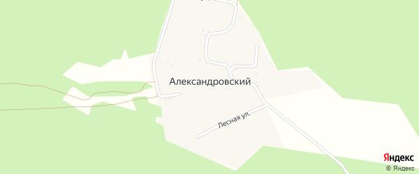 Лесная улица на карте Александровского хутора с номерами домов