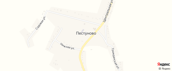Центральная улица на карте села Пестуново с номерами домов