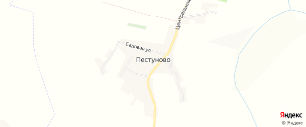 Карта села Пестуново в Белгородской области с улицами и номерами домов