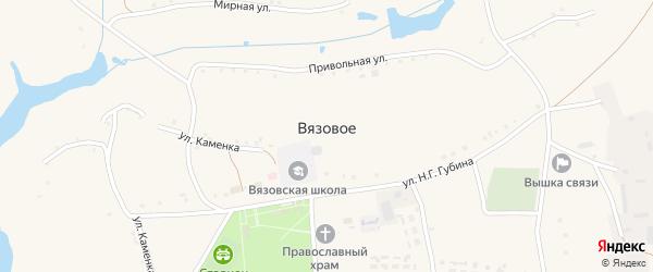 Улица им Губина Н. Г. на карте Вязового села с номерами домов