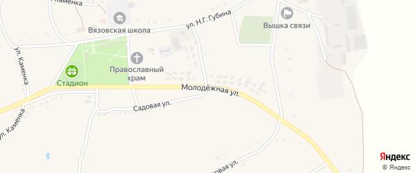 Молодежная улица на карте Вязового села с номерами домов