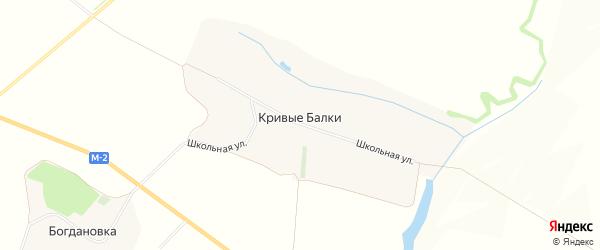 Карта села Кривые Балки в Белгородской области с улицами и номерами домов