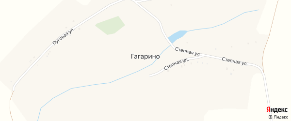 Степная улица на карте села Гагарино с номерами домов