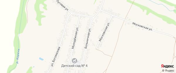 Больничная улица на карте села Алексеевки с номерами домов