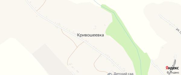 Луговая улица на карте села Кривошеевки с номерами домов