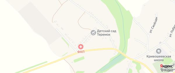 Национальная улица на карте села Кривошеевки с номерами домов