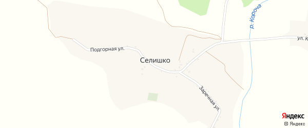 Подгорная улица на карте села Селишка с номерами домов