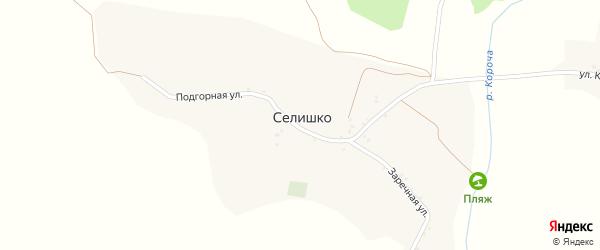 Луговая улица на карте села Селишка с номерами домов