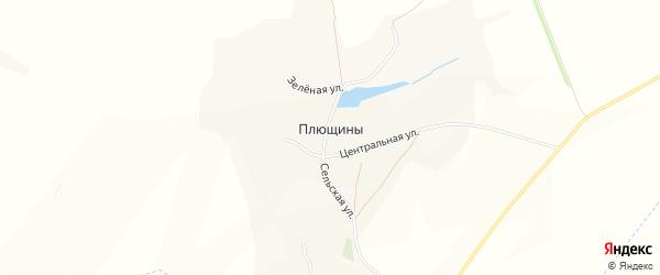 Карта села Плющины в Белгородской области с улицами и номерами домов