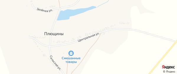Центральная улица на карте села Плющины с номерами домов