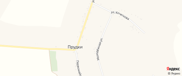 Молодежная улица на карте села Прудки с номерами домов