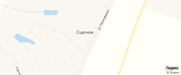 Улица Прокофьева на карте хутора Сцепного с номерами домов