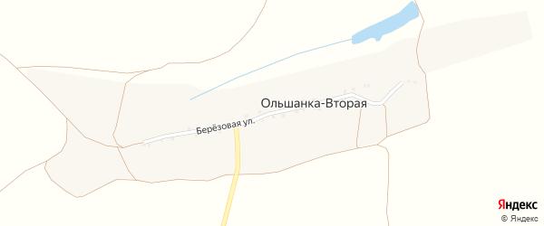 Березовая улица на карте села Ольшанки-Второй с номерами домов