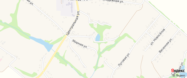 Улица им Н.Н.Козлова на карте Холодного села с номерами домов
