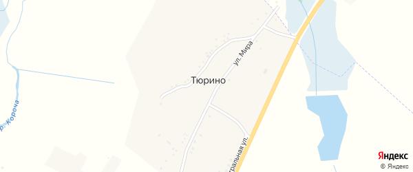 Улица Мира на карте села Тюрино с номерами домов