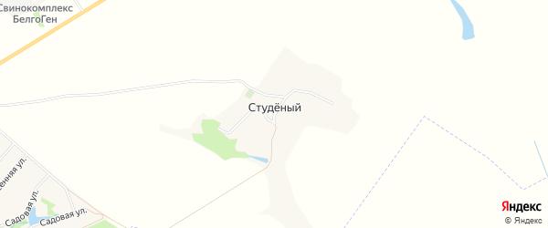 Карта Студеного хутора в Белгородской области с улицами и номерами домов