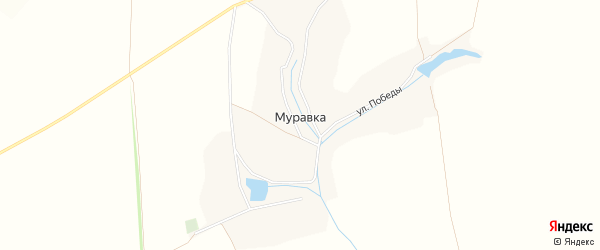 Карта хутора Муравки в Белгородской области с улицами и номерами домов