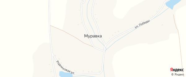 Родниковая улица на карте хутора Муравки с номерами домов