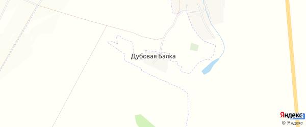 Карта хутора Дубовой Балки в Белгородской области с улицами и номерами домов