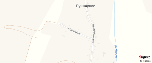 Переулок Марьин на карте Пушкарного села с номерами домов