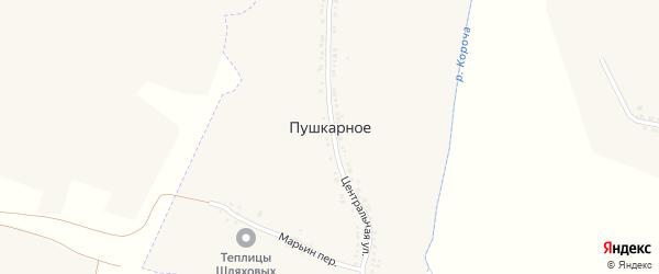 Школьный переулок на карте Пушкарного села с номерами домов