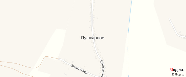 Центральная улица на карте Пушкарного села с номерами домов