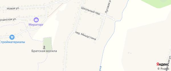 Переулок Им Мишустина на карте Пушкарного села с номерами домов